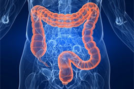 ¿Qué es la enfermedad inflamatoria intestinal?
